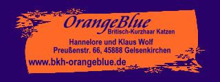 OrangeBlue