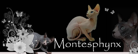 Montesphynx *ES