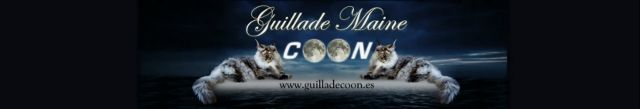 GUILLADECOON