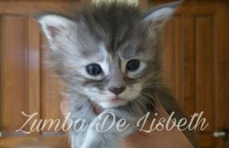 Zumba De Lisbeth