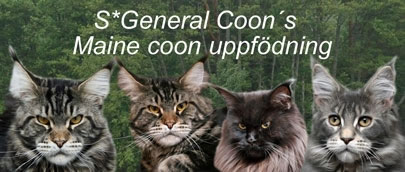 General Coon's