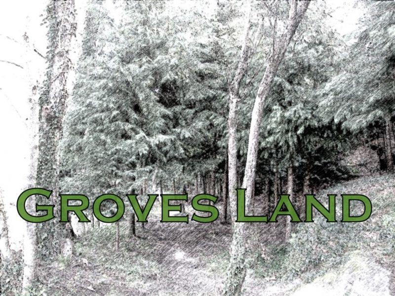 Groves Land