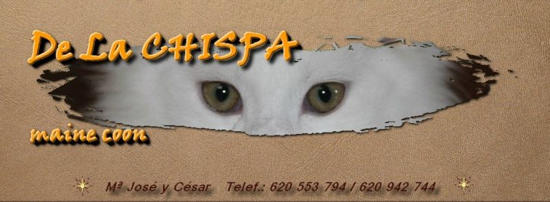 De La CHISPA