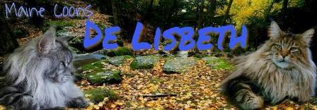 De lisbeth