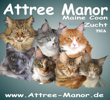 Attree Manor