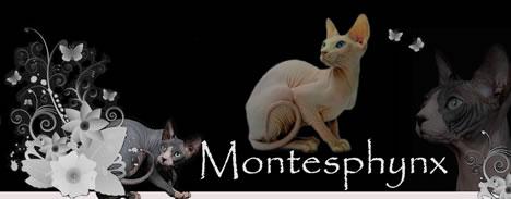 Montesphynx *ES