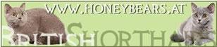 Honeybears/Chwojans
