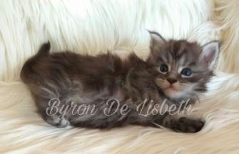 Byron De Lisbeth